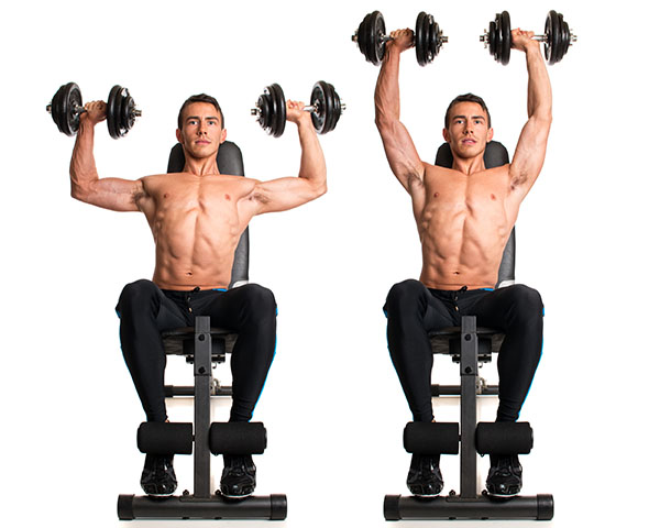 Shoulder and Trap Workout